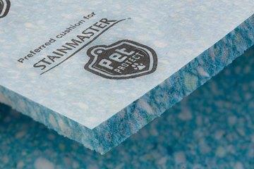 stainmastersupreme pet closeup lg 1500x1000
